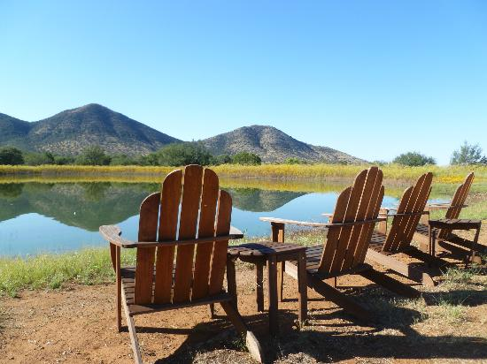 ‪‪Sunglow Ranch - Arizona Guest Ranch and Resort‬: One of many spots to relax