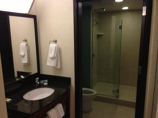 Hyatt Place Jacksonville Airport : bathroom with large shower