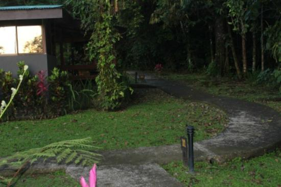 Chachagua Rainforest Eco Lodge: Path to the rooms