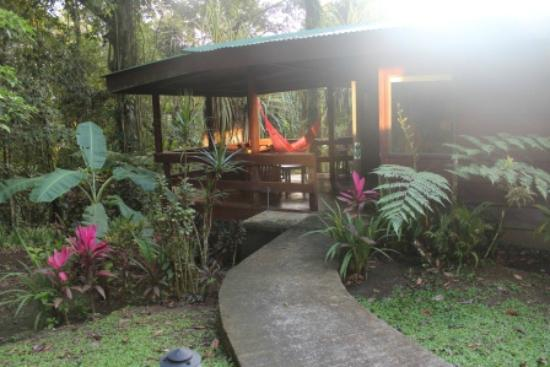 Chachagua Rainforest Eco Lodge: The room