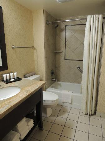 Glenwood Hot Springs Lodge: bathroom