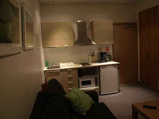 Downtown Reykjavik Apartments: Kitchen Area (and main entry).