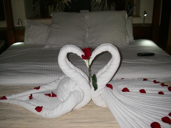Excellence Playa Mujeres: Surprise in our room!