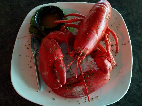 Ichabod's Dockside: Maine Lobster Glut Special