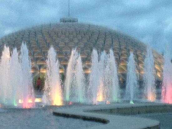 Queen Elizabeth Park: Dancing Waters