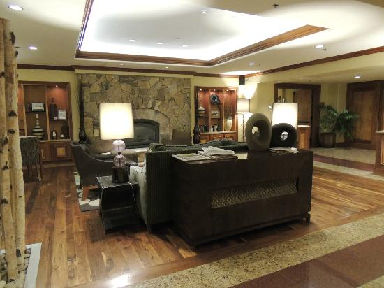 Valdoro Mountain Lodge: lobby
