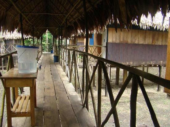 Muyuna Amazon Lodge: walkway connecting rooms to main lodge