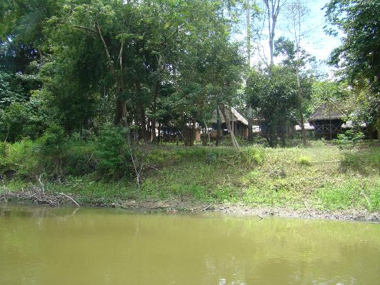 Muyuna Amazon Lodge: view from river