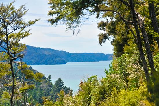 Abel Tasman National Park from Bellbird Lodge