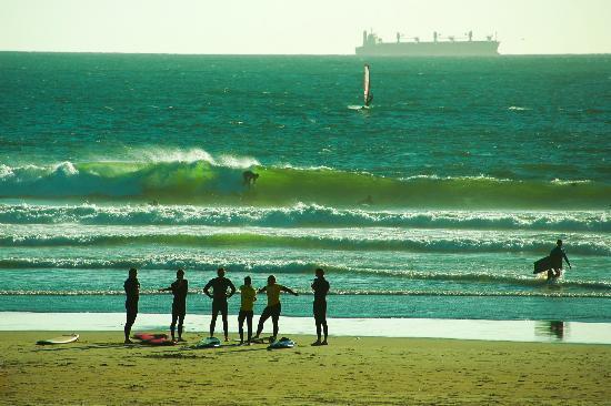 Into the Blue Hostel : Praia de Matosinhos (Local beach 5min by foot)