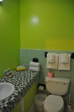 Ibis Bay Beach Resort : Tropical bathroom