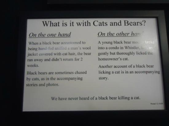 North American Bear Center: We thought this was funny