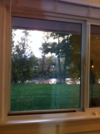Johnny's Motel: View From Kitchen Window 