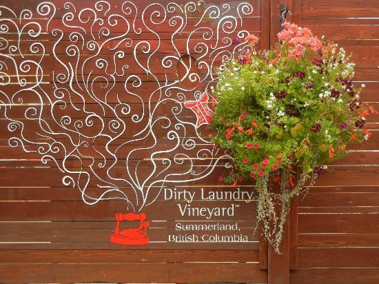 Dirty Laundry Vineyard : Hidden damsels