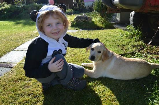 Blue House: Adorable puppy, Paula