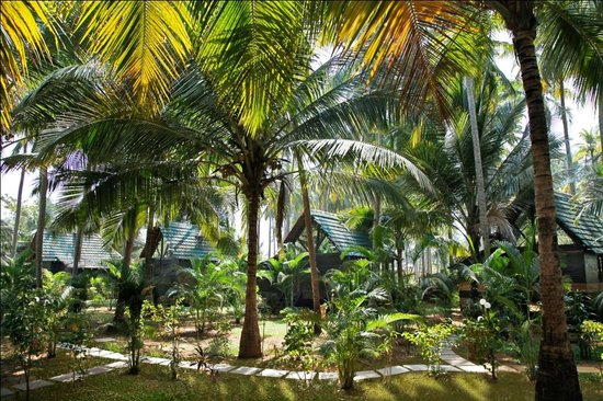 Leela Cottages: Located in lush green Coconut Plantations