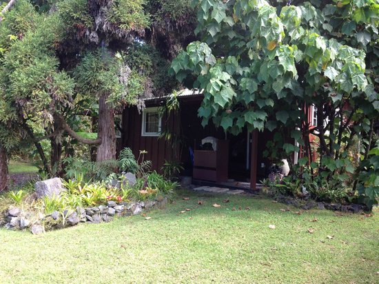 Volcano Artist Cottage : Cottage nestled into the garden