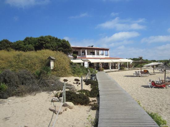 The Real Playa