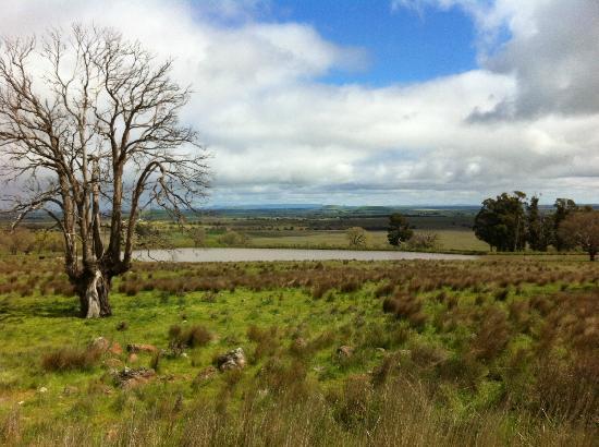 Tuki Retreat : Walking around the farm...