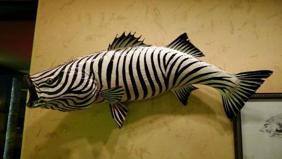 zebra wall decor 1
