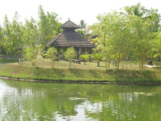 The Zuri Kumarakom: yoga and work out area