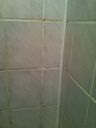 Relax-Hotel : Schimmel in der Dusche