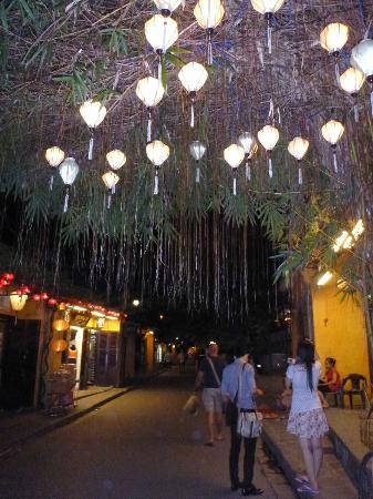 Wide Eyed Tours - Day Tours: Wide Eyed Tours Hoi An