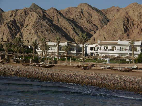 Sea Sun Hotel Dahab : LOOKING BACK FROM BEACH