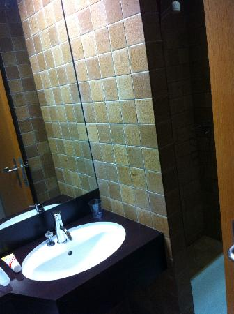 Nash Airport Hotel: mini bathroom