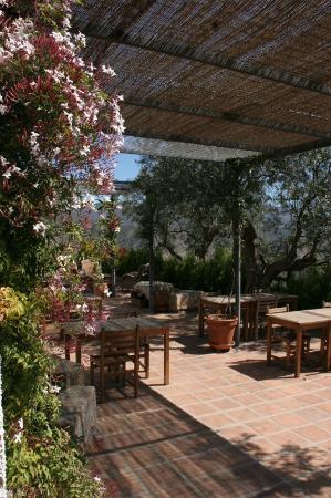 Casa Rural Cortijo Valavero: Shady terraces full of flowers