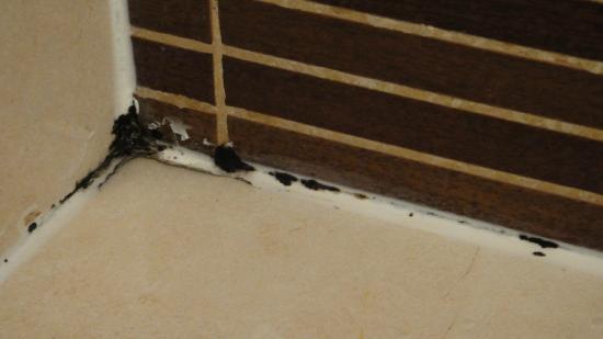 ILUNION Almirante: Moississures sur les joints de la douche