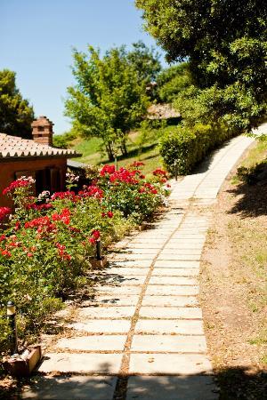 La Melosa Resort&Spa: vialetto del ristorante