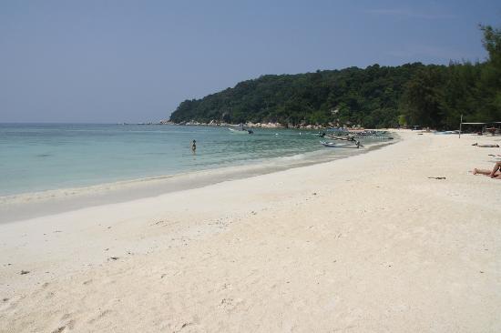 Fauna Beach Chalet: la spiaggia