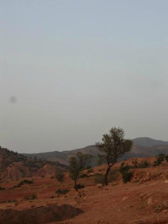 Riad Aslda : view