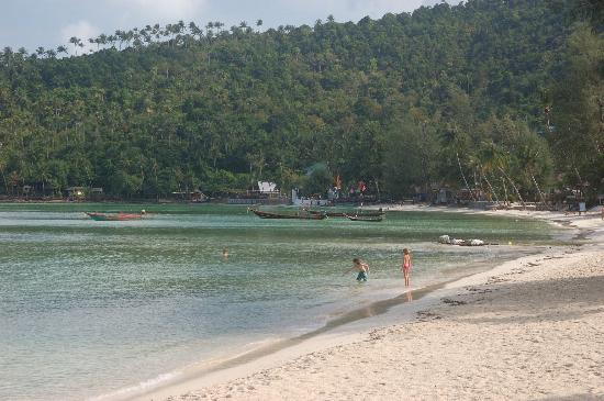 Salad Beach: water