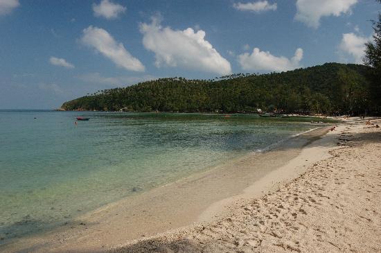 Salad Beach: sea