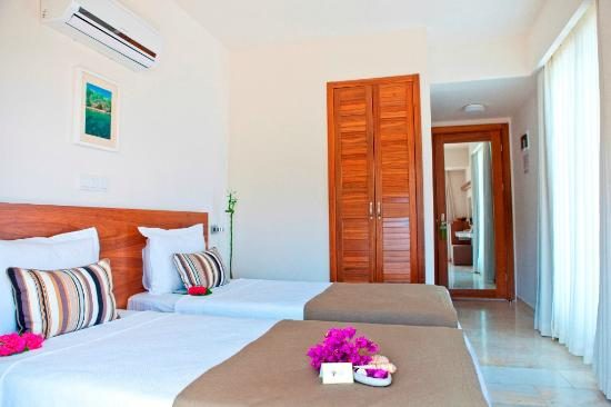 Olea Nova Hotel: Standard Twin Room