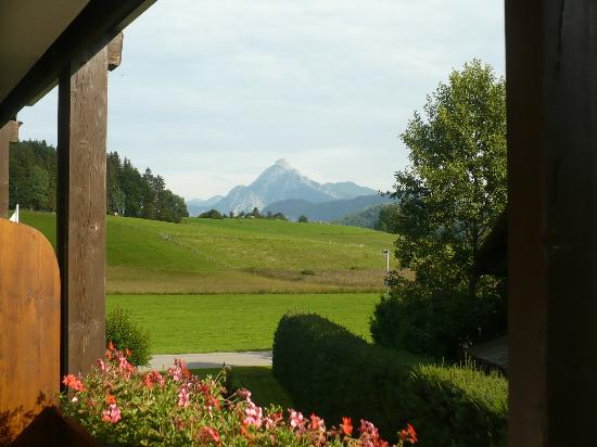 Landhaus Pension Seehof: View from room