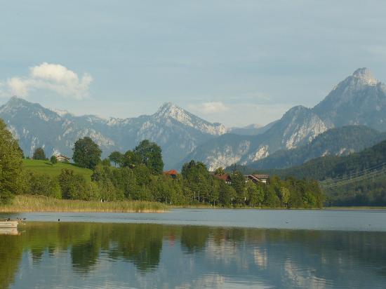 Landhaus Pension Seehof: A walk along the lake nearby.