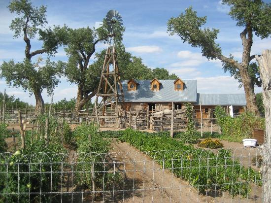 Farmhouse In Country Farm Area Picture Of Abq Biopark
