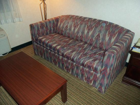 Days Inn Englewood Denver Tech Center: Sofa and table