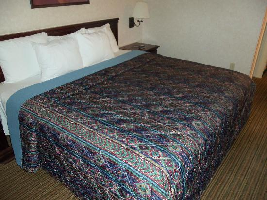 Days Inn Englewood Denver Tech Center: King bed