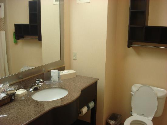 Hampton Inn Oakland-Hayward: Bathroom