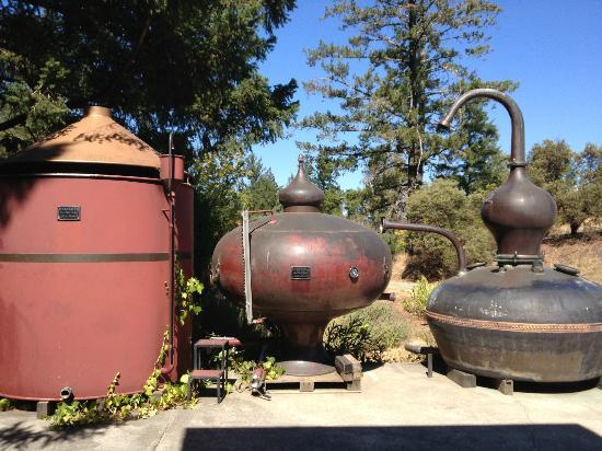 Charbay Winery & Distillery: Charbay distillery