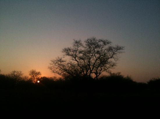 Golden Leopard Resort - Manyane: Sunrise from the chalets