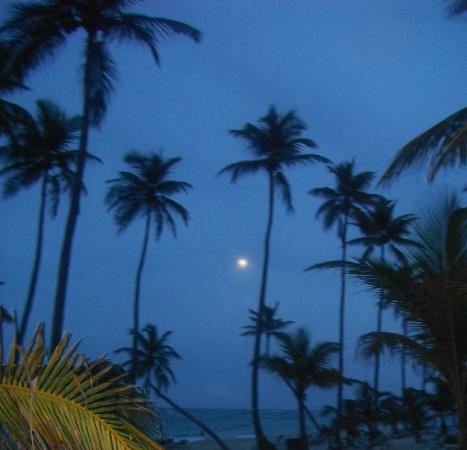 ClubHotel Riu Bambu: Beach after sunset