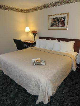 Quality Inn & Suites Biltmore South: King room