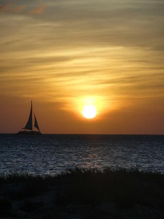 Divi Aruba Phoenix Beach Resort: Puesta de sol en la playa