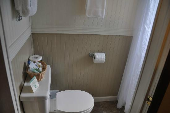 Alpine Motel: Dusche / Toilette