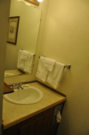Alpine Motel: Toilettentisch